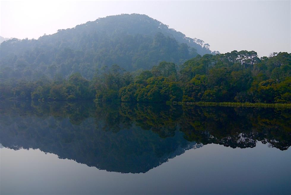 Gordon River Cruise - mystische Spiegelungen - Tasmania