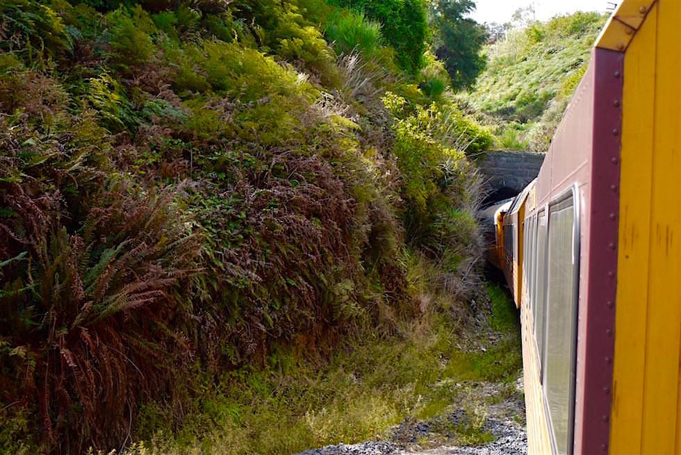 Salisbury Tunnel - Taieri Gorge Railway - Neuseeland Südinsel