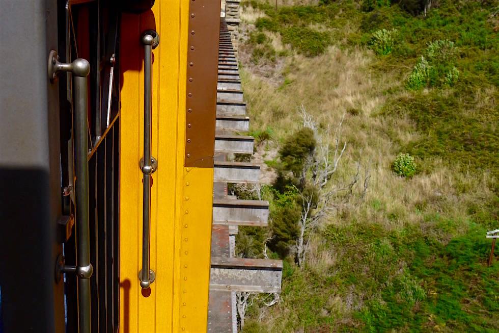 Nase im Fahrtwind - Taieri Gorge Railway - Neuseeland