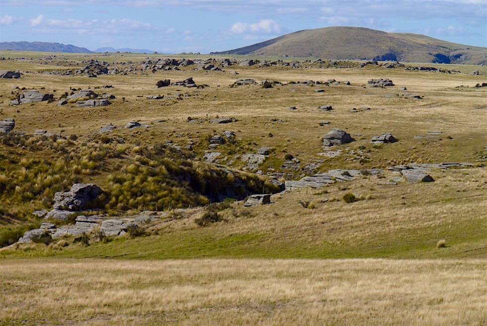 Strath Taieri Plain in der Otago Ebene bei Pukerangi - Neuseeland Südinsel