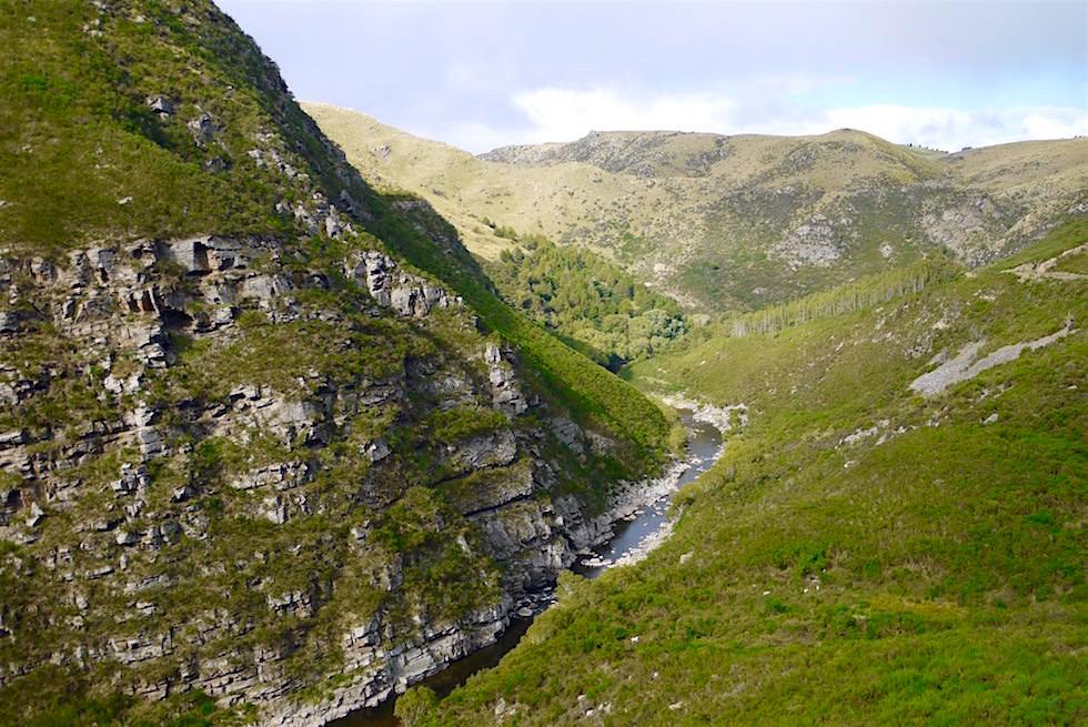 Blick in Taieri Gorge -Deep Stream - Neuseeland Südinsel