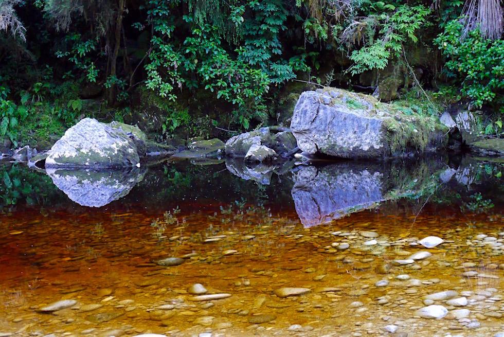 Oparara River: Steine spiegeln sich im Flusswasser - Oparara Basin - Neuseeland Südinsel Westküste