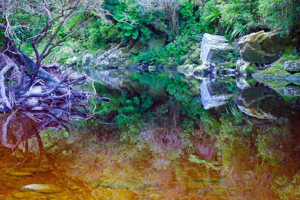 Spiegelungen Steine im Oparara River - Oparara Arch - Neuseeland Südinsel