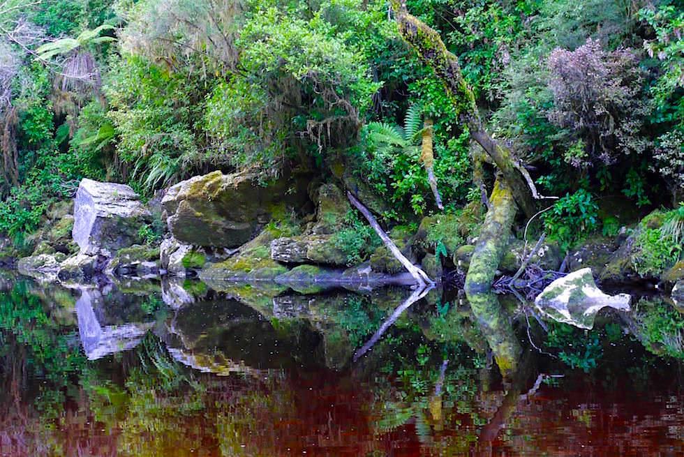 Bensteinfarbenes & tiefbraunes Wasser des Oparara River - Oparara Arch - Neuseeland Südinsel