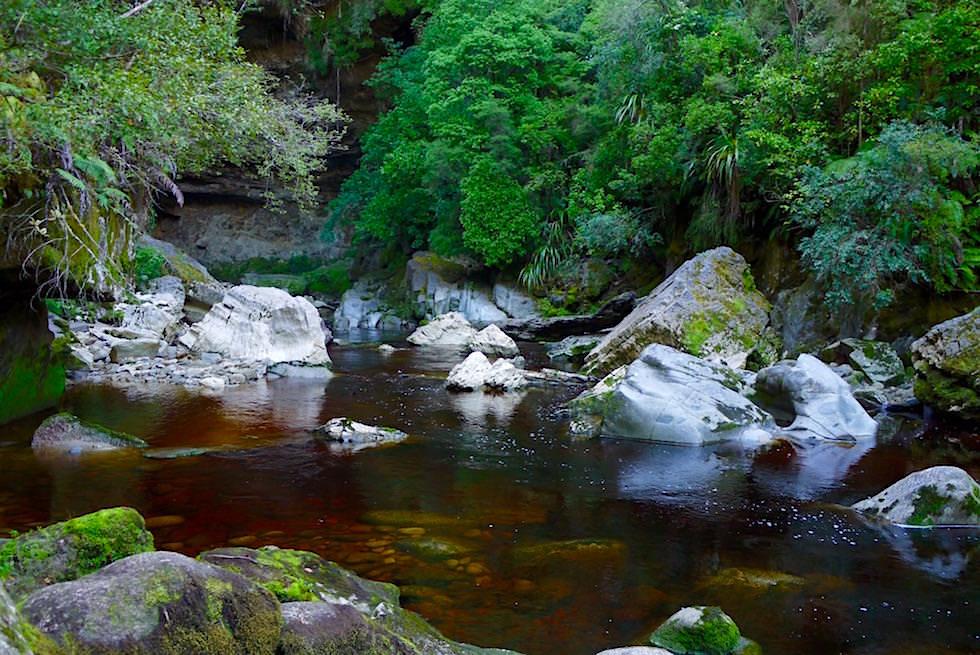 Oparara River bei dem Oparara Arch im Oparara Basin - Neuseeland Südinsel bei Karamea