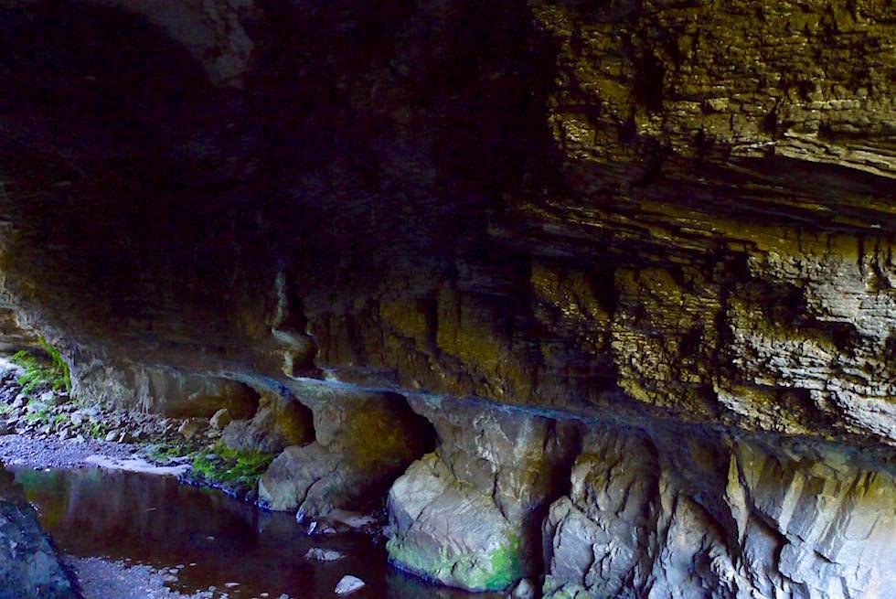 Oparara Cave bei der Oparara Arch - Neuseeland Südinsel Westküste