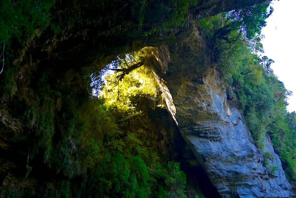 Unter dem Steinbogen der Oparara Arch - Oparara Basin - Neuseeland Südinsel bei Karamea