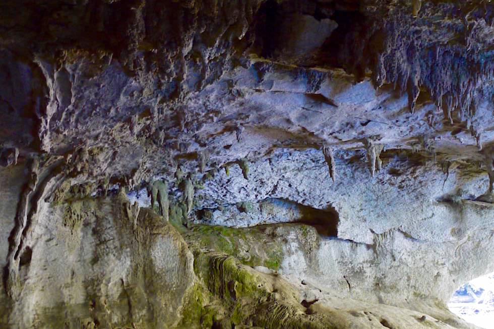 Stalaktiten Moria Cave - Oparara Basin - Neuseeland Nordwestküste der Südinsel