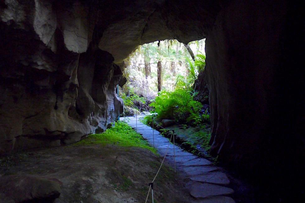 Eingang Crazy Paving Caves im Oparara Basin - Neuseeland Südinsel