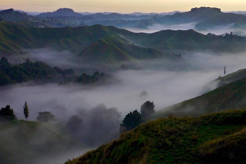 Morgennebel - Forgotten World Highway - Neuseeland