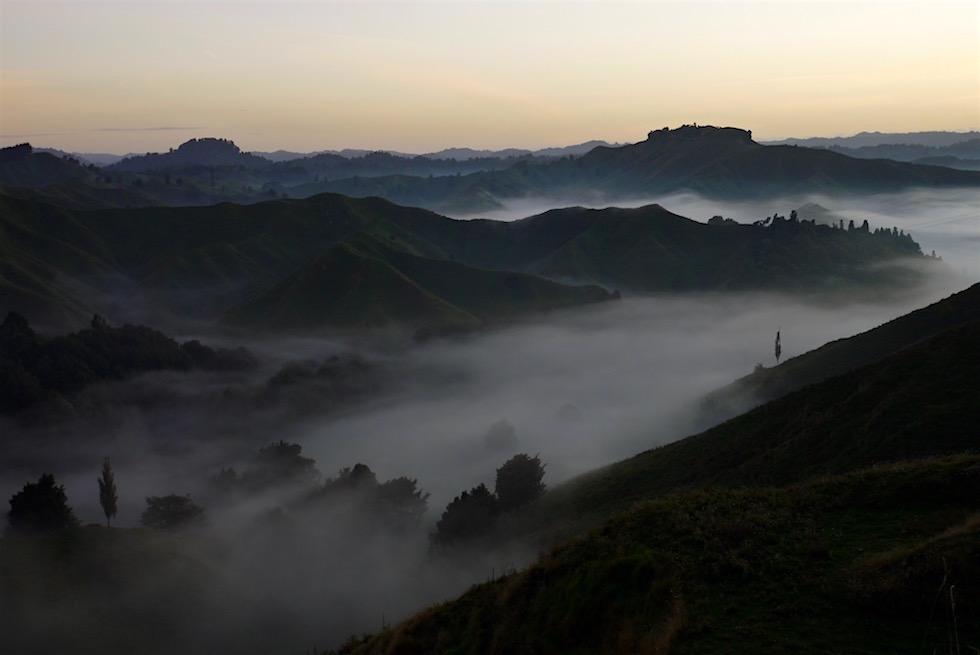 Sonnenaufgang - Tahora Sattel - Forgotten World Highway - Neuseeland Nordinsel
