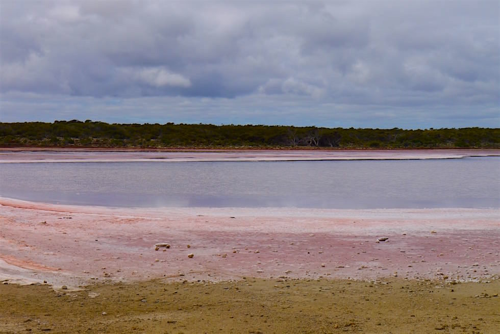 Halite Lake - Coorong National Park - South Australia