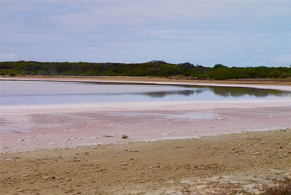 Einer der Salzseen im Coorong National Park - South Australia