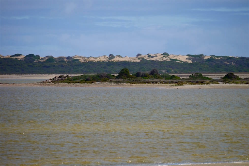 Pelican Islands bei Salt Creek im Coorong National Park - South Australia