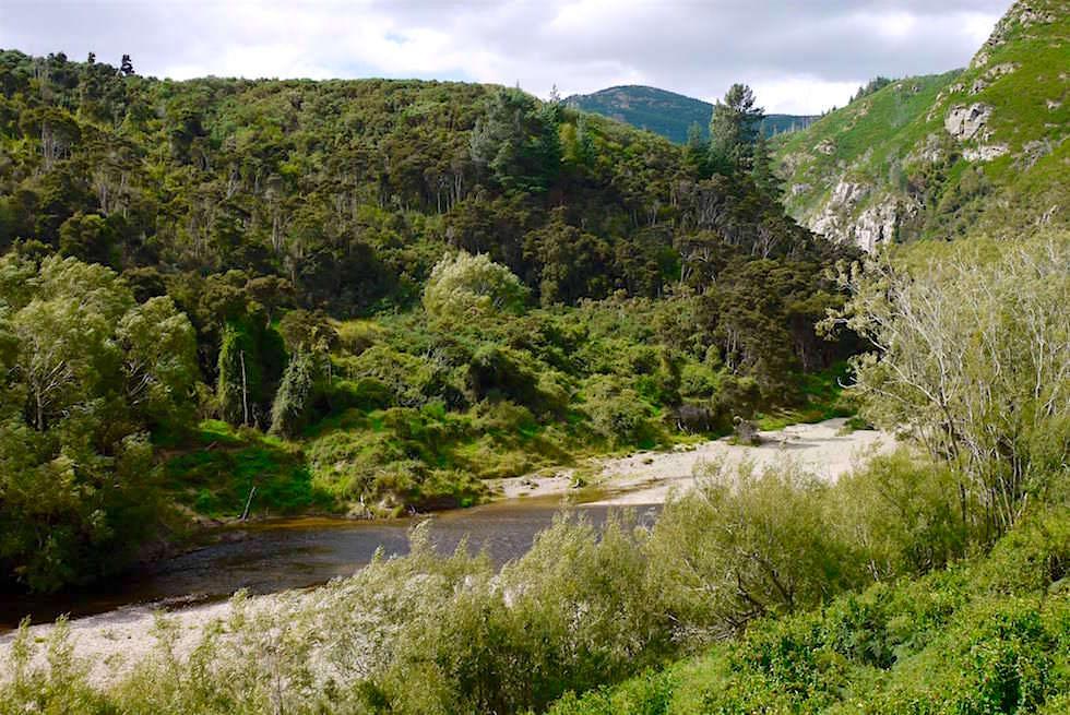 Taieri River & Hügel - Taieri Gorge Railway - Neuseeland Südinsel