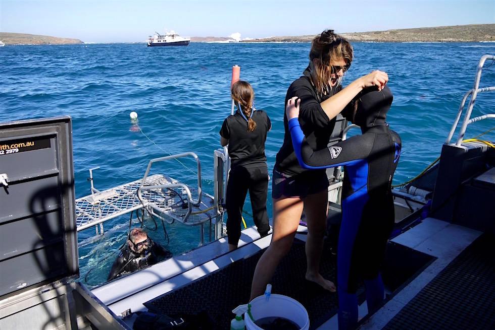Vorbereitungen auf der Shark Warrior - Tauchen mit Weißen Haien - South Australia