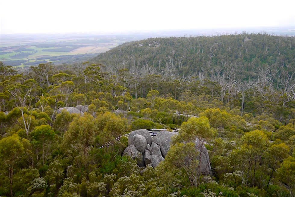 Blick auf Karri Lookout - Castle Rock Summit Walk- Porongurup National Park - Western Australia