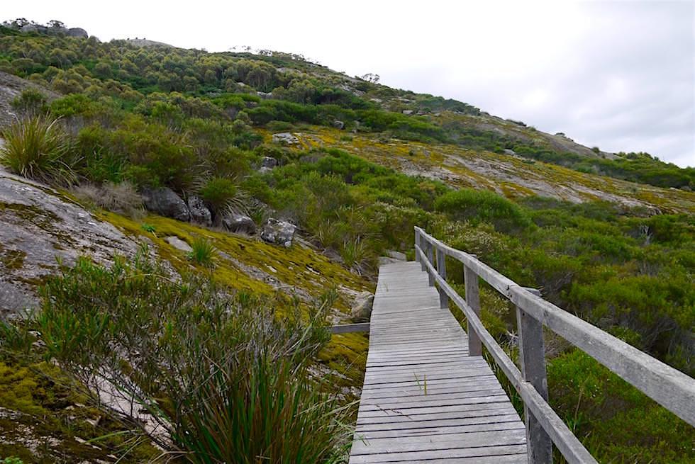 Holzbrücke - Devils Slide Trail - Porongurup National Park - Western Australia