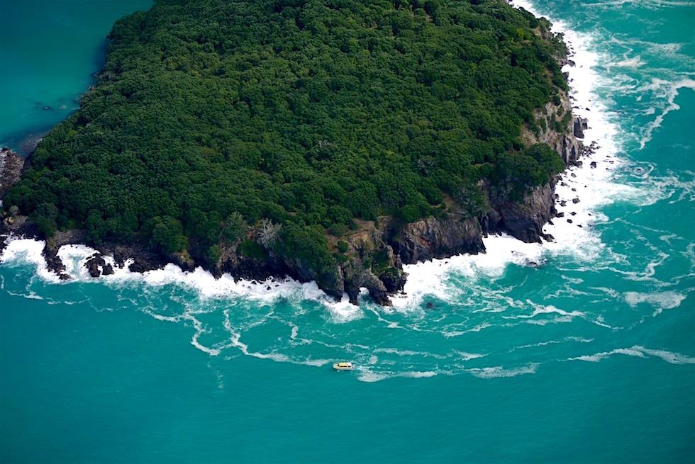 Die schroffe Küste von Whale Island - White Island Flights - Neuseeland Nordinsel
