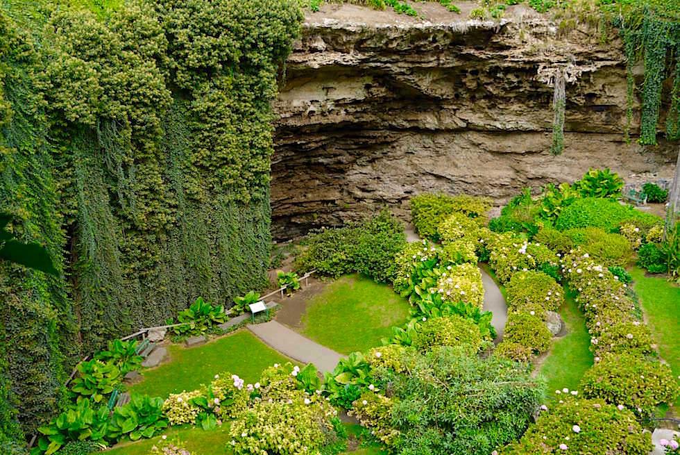 Der Paradiesgarten im Umpherston Sinkhole - Mount Gambier - South Australia