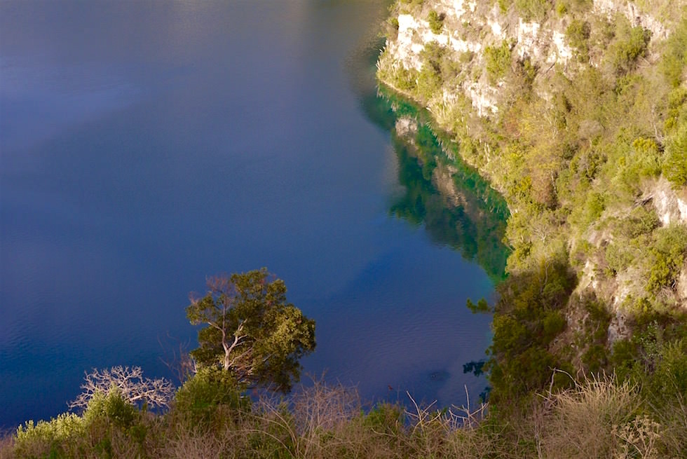 Smaragdgrün spiegelnde Uferböschung am Blue Lake - Mount Gambier - South Australia
