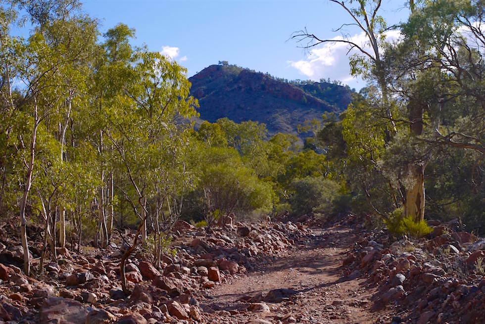 Creek - Ridgetop Tour - Arkaroola - South Australia