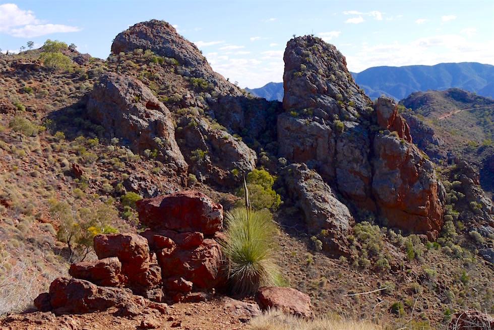 Überwälitigender Ausblick vom Splitt Rock Lookout auf der Ridge-Top Tour - Arkaroola - South Australia
