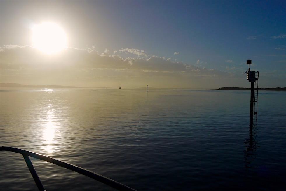 """Start """"Schnorcheln mit Australischen Seelöwen"""" - Eyre Peninsula - South Australia"""