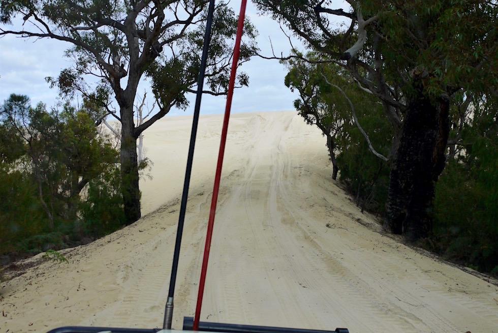 Beach & Forest - D'Entrecasteaux National Park - Western Australia