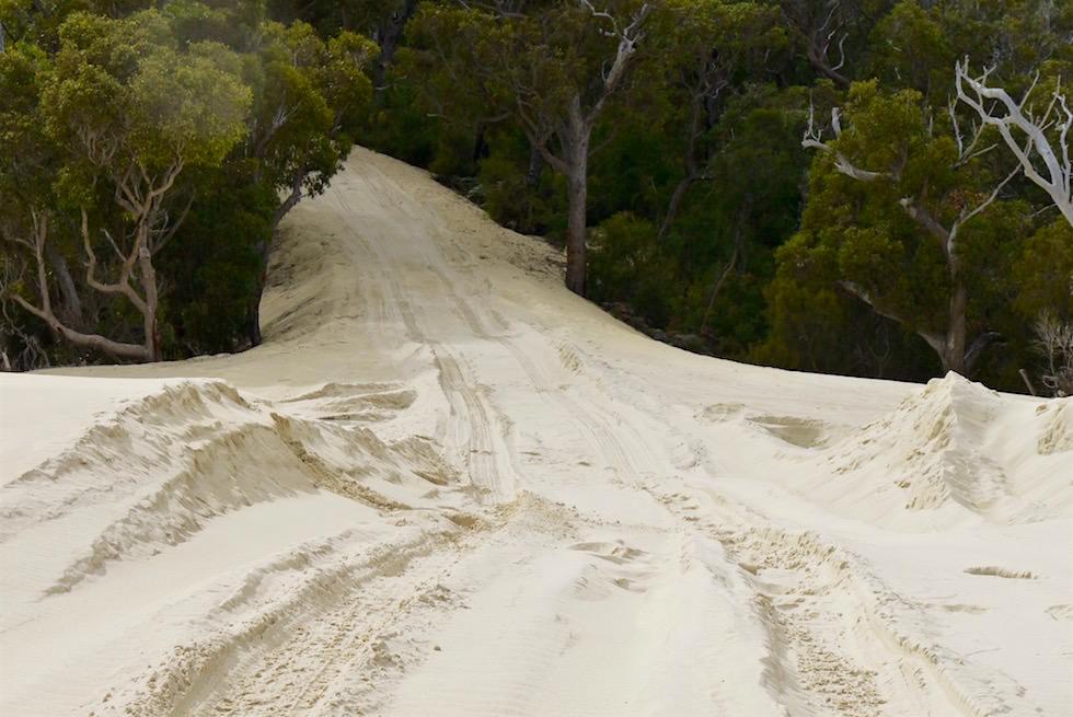 Yeagarup Sanddünen verschlucken Wald - D'Entrecasteaux - Western Australia