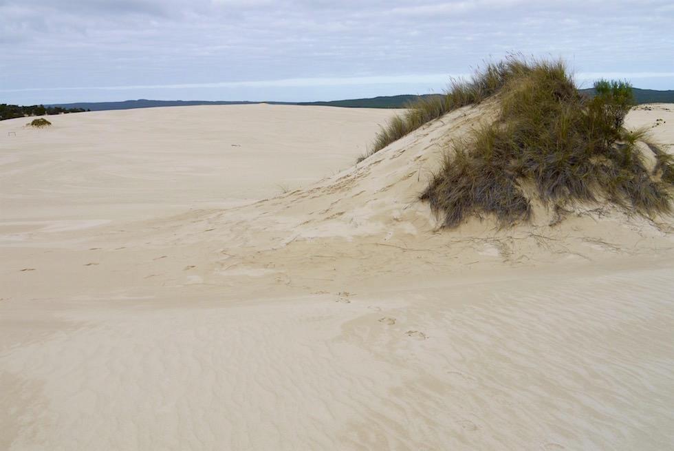 Yeagarup Sanddünen & Wolken - D'Entrecasteaux National Park - Western Australia