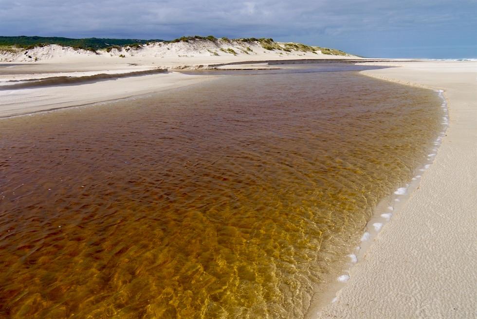 Warren River trifft auf Southern Ocean - D'Entrecasteaux NP - Western Australia