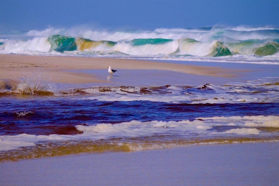 Lieblingsfoto - Warren River & Southern Ocean - Western Australia