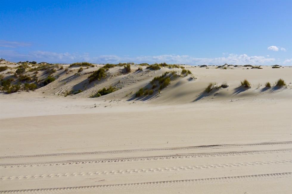 Spuren im Sand - Yeagarup Sanddünen - Western Australia