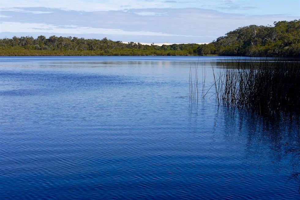 Blick auf See & Sanddünen - Dead Man's Lake - D'Entrecasteaux National Park - Western Australia