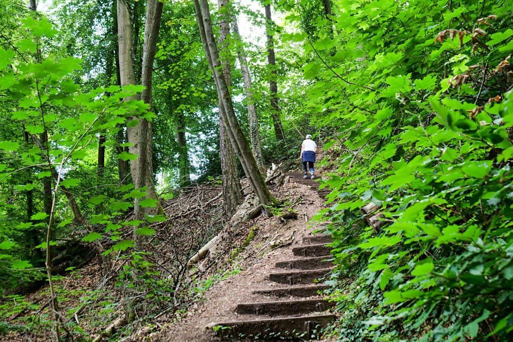 Steiler, kurzer Aufstieg auf die Lange Wand beim Donaudurchbruch - Wanderung zum Kloster Weltenburg - Weltenburger Enge, Bayern