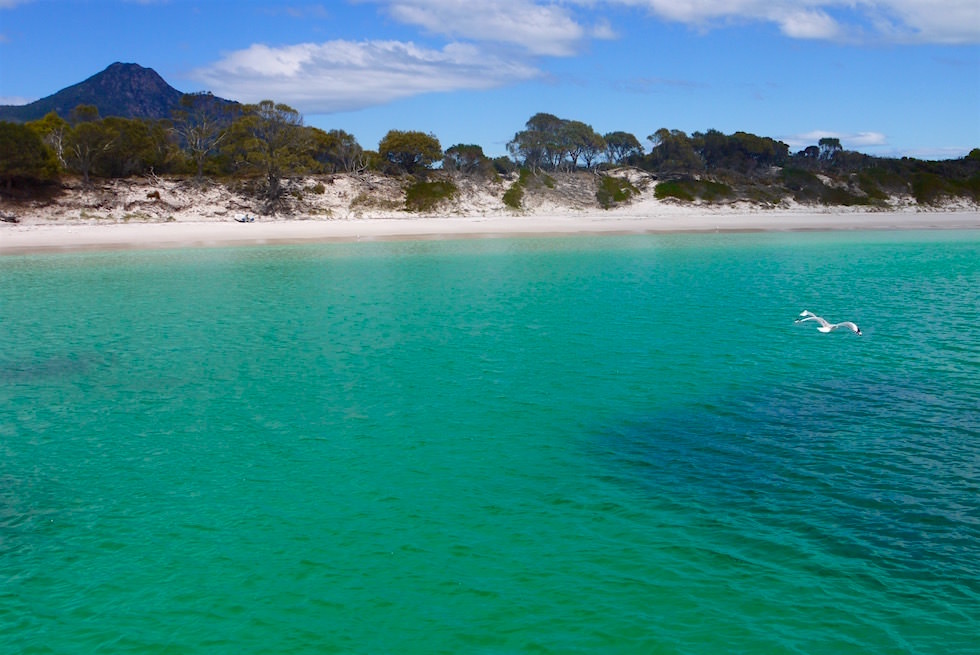 Ankern in der Wineglass Bay Bucht - Wineglass Bay Cruise - Tasmanien