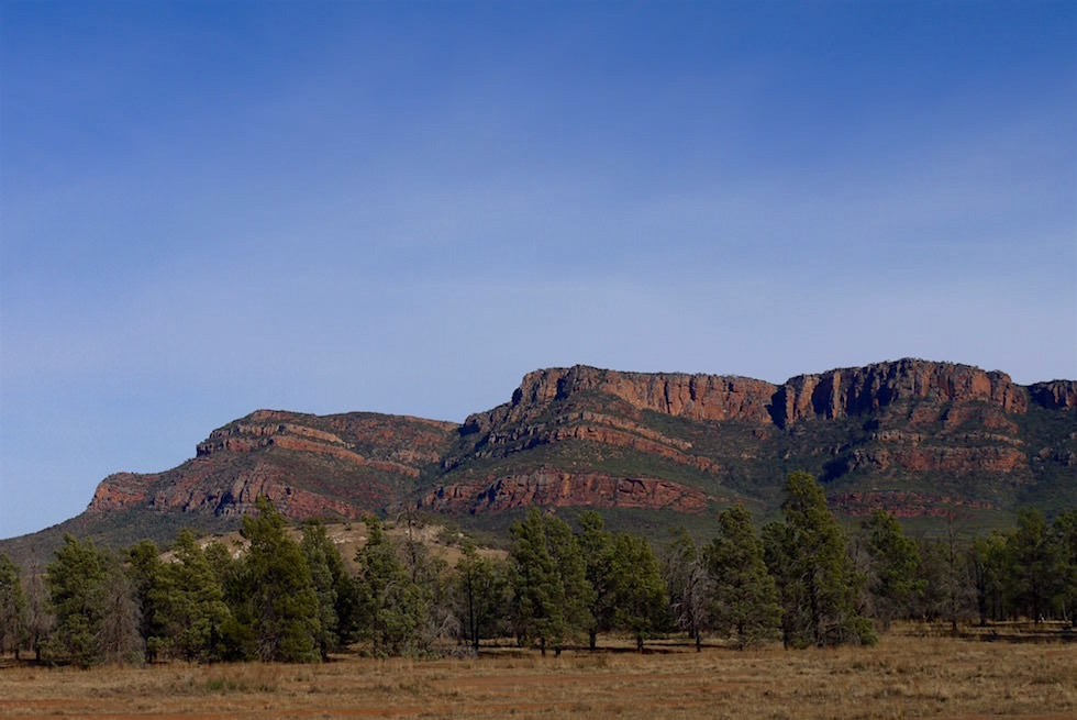 Wilpena Pound Gebirgskette - Flinders Ranges - South Australia