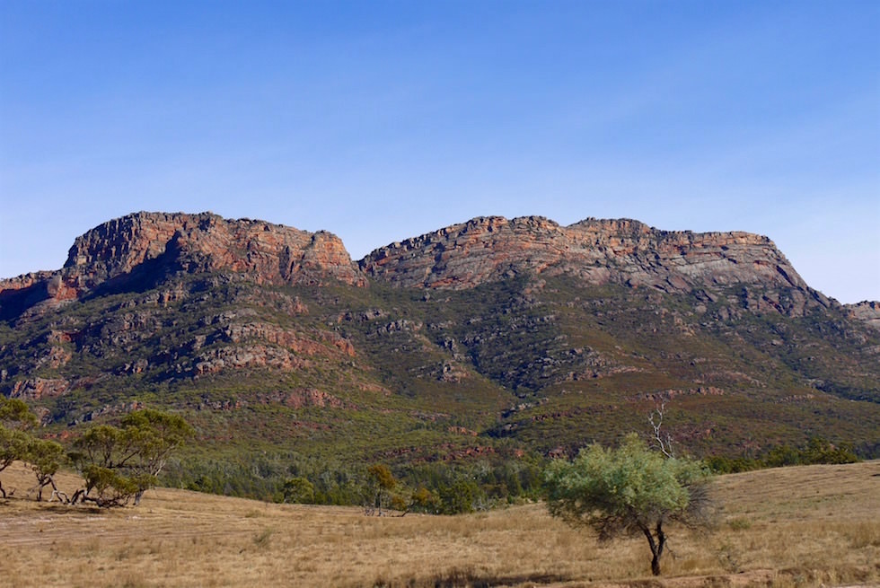 Blick auf Wilpena Pound - Flinders Ranges - South Australia