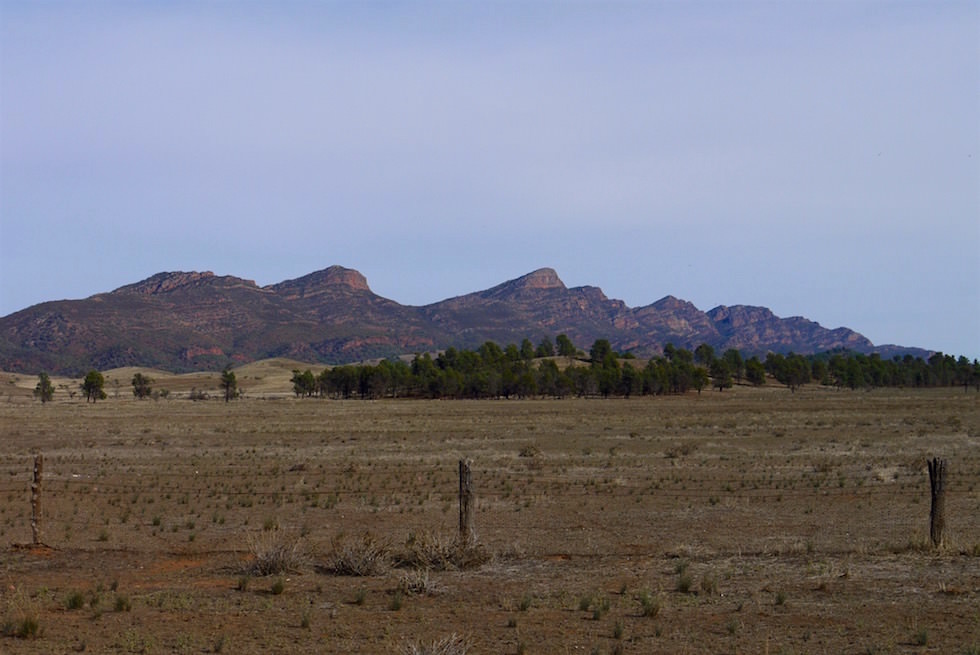 Rawnsley Park Station - Flinders Ranges - South Australia