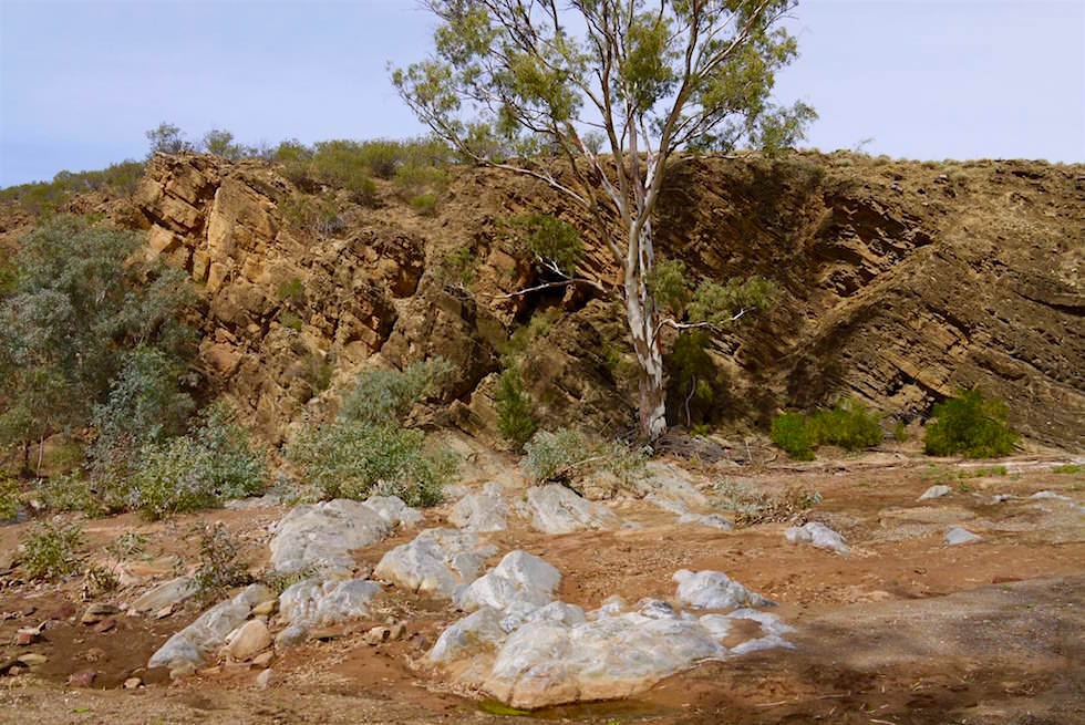Brachina Gorge - weiß-grüne Steine - Flinders Ranges - South Australia