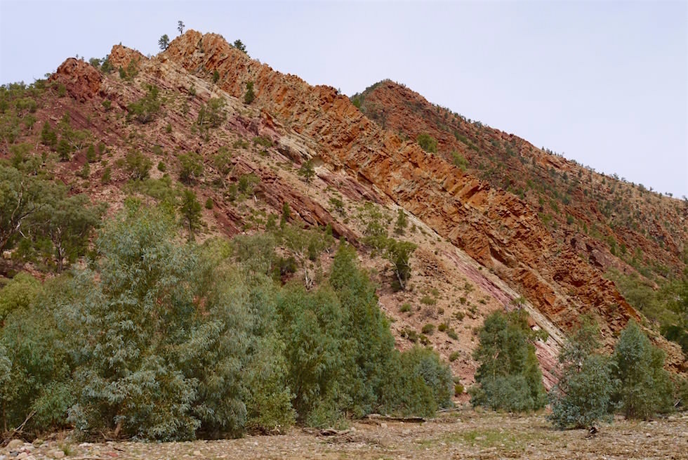 Entlang Brachina Gorge - Flinders Ranges - South Australia