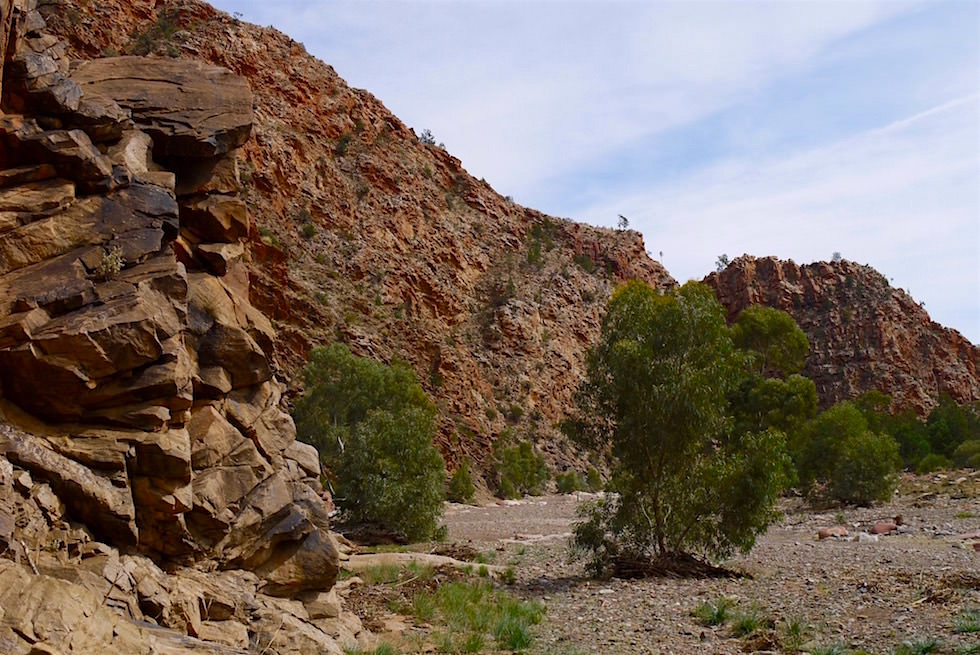 Brachina Gorge - Fossilienfunde - Flinders Ranges - South Australia