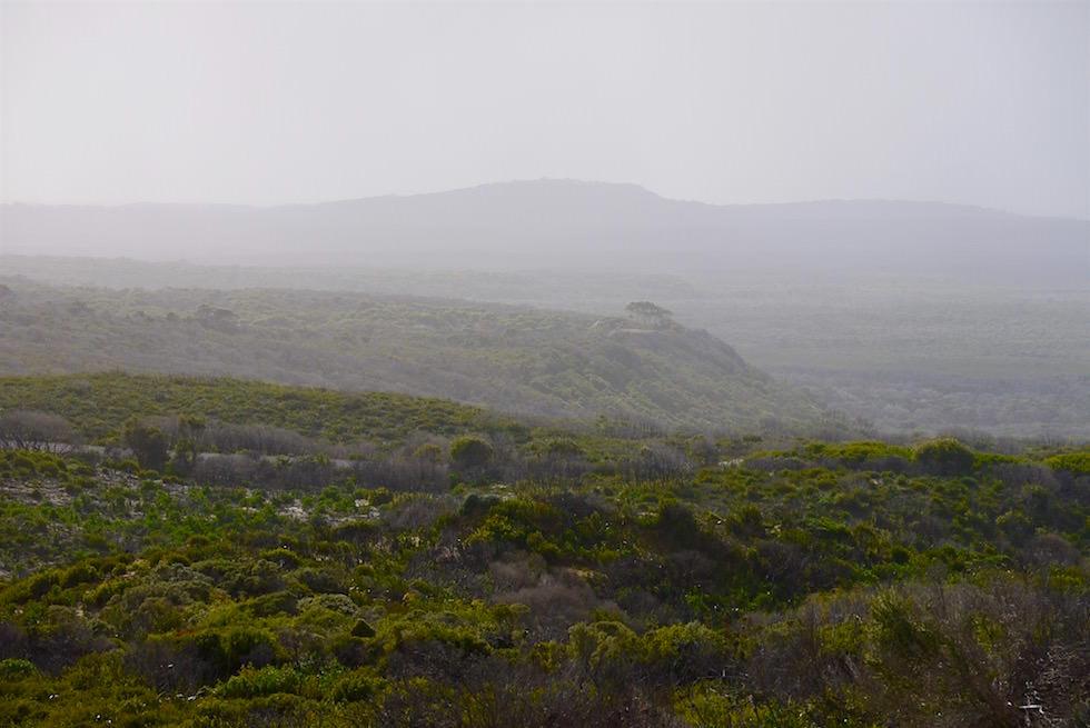Nebelsuppe & Hinterland - Gardner Point - D'Entrecasteaux - Western Australia