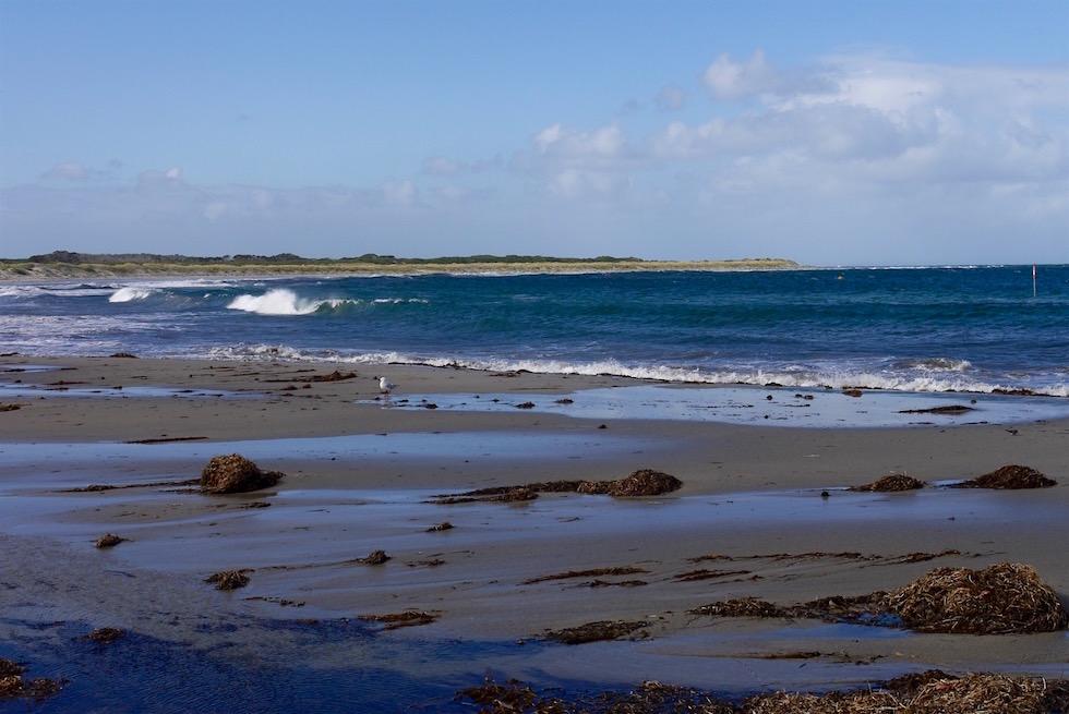 Strandabschnitt - Windy Harbour - Northcliffe - Western Australia
