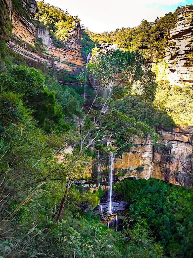 Spektakuläre und schönste Blue Mountains Wanderung - Ausblick auf die gigantischen Wentworth Falls von Weitem - New South Wales