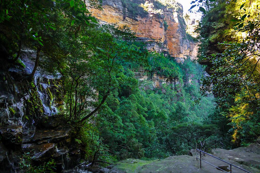 Auf dem Weg zu den Sylvia Falls durch das Valley of Water - Blue Mountains Wanderung - New South Wales