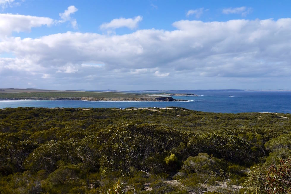 Neue Campgrounds - Whalers Way bei Port Lincoln - South Australia