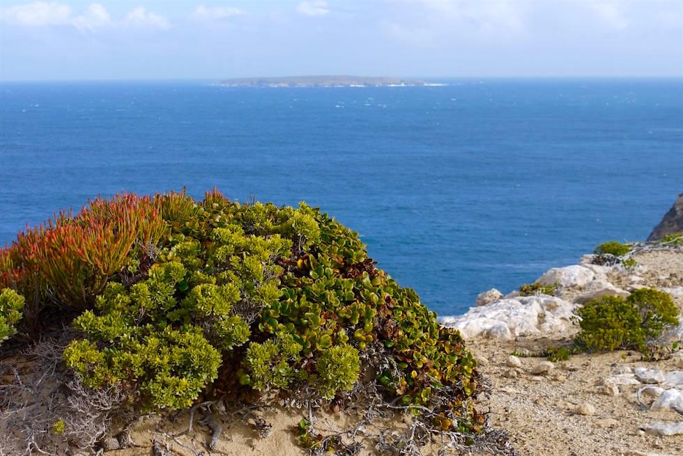 Ausblick von Blue Whale Bay - Whalers Way nahe Port Lincoln - South Australia