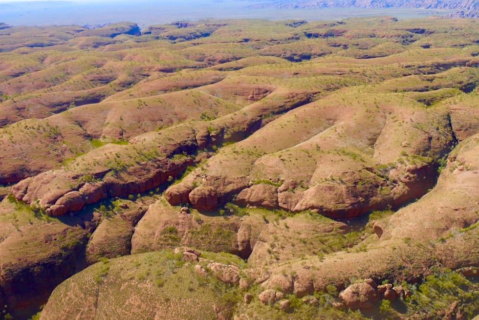Purnululu National Park & Bungle Bungle - Runde Formen auf dem Dach dieses Gebirgszugs - Kimberley - Western Australia